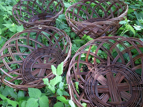 シダ食器籠