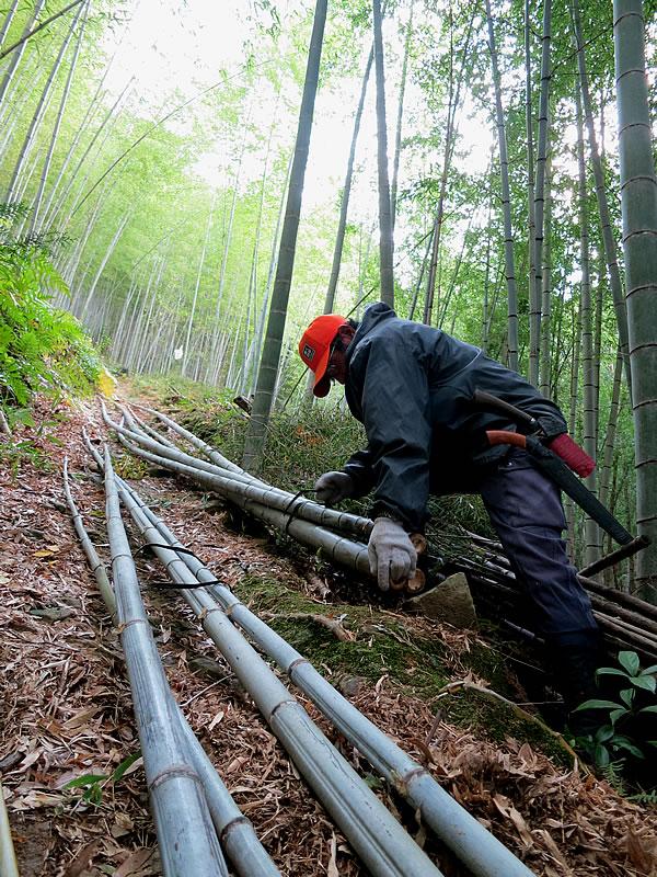 竹林の職人