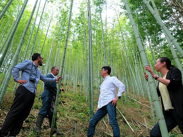日本唯一の竹林