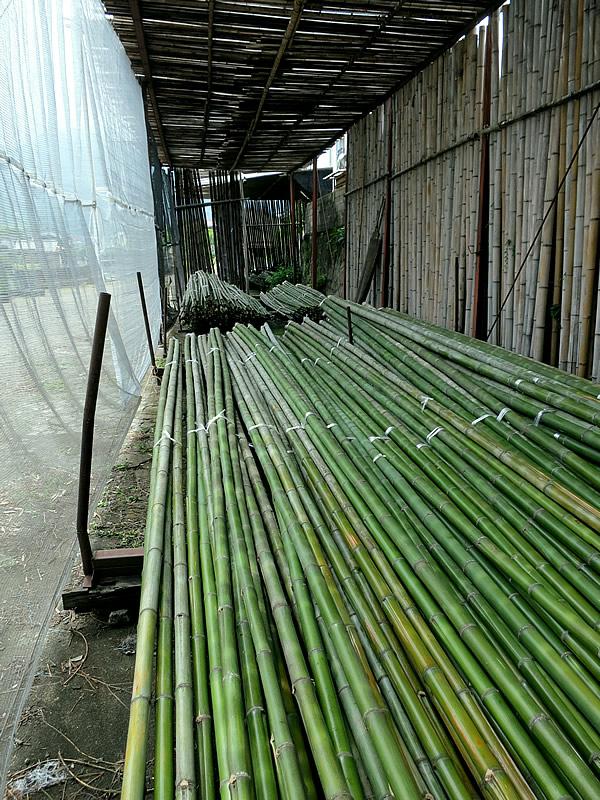 原材料の竹