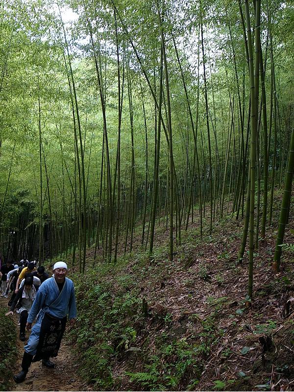 虎竹の里の山道