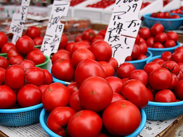 高知フルーツトマト