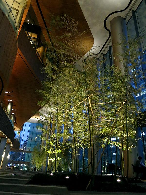 虎ノ門ヒルズの竹
