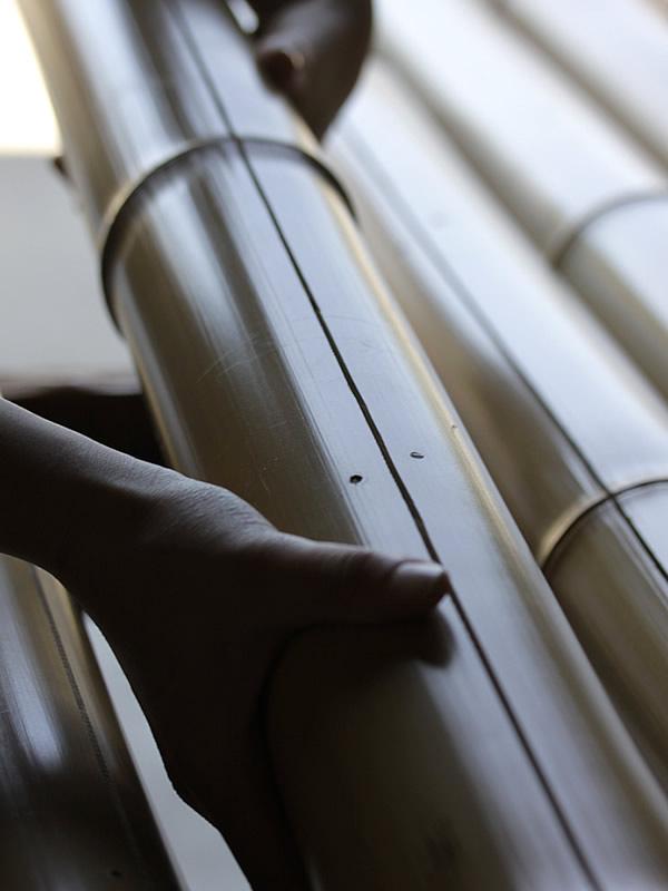 竹の背割り