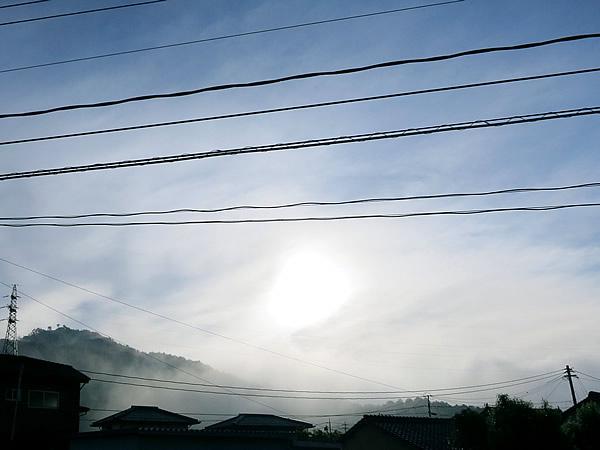 真庭市の霧