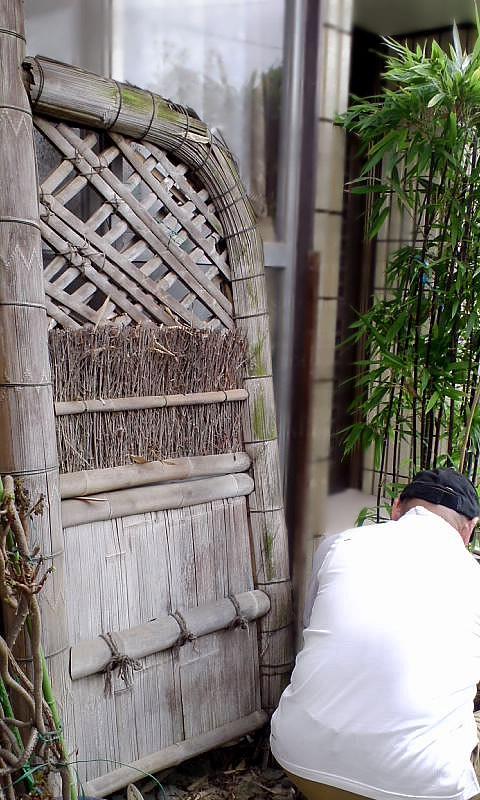 古い虎竹袖垣