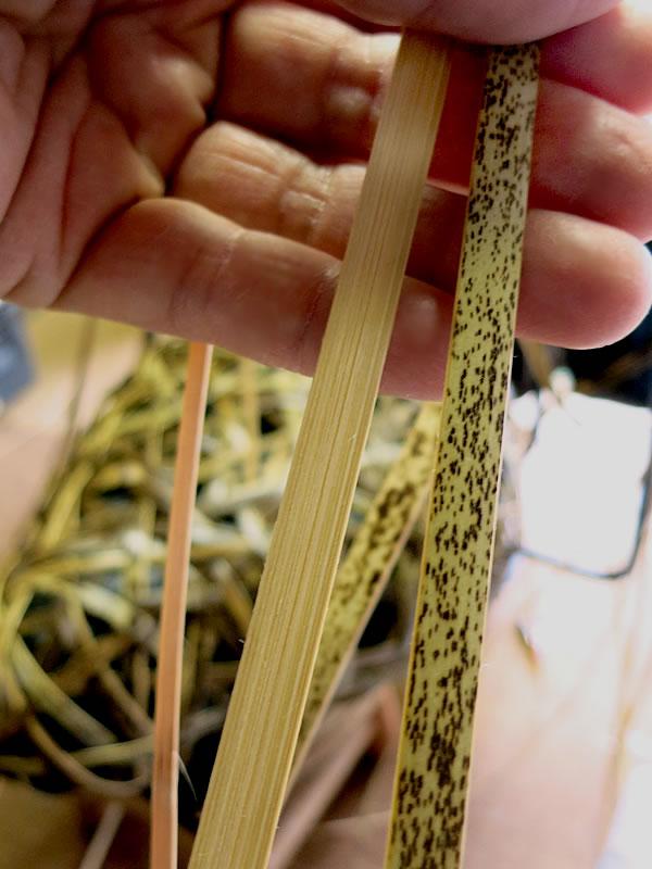 日本唯一の虎竹自動車シート竹ひご(bamboo car)