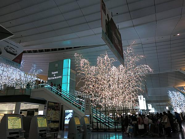 羽田国際空港の竹イルミネーション