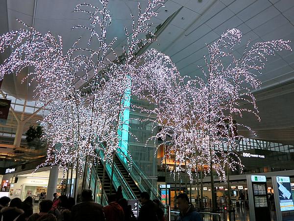 羽田国際空港竹灯り