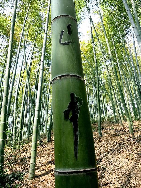 文字を書かれた竹