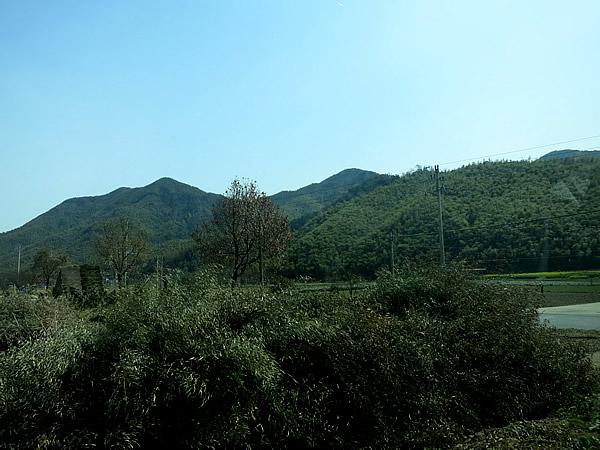 中国浙江省湖州市安吉県の竹山