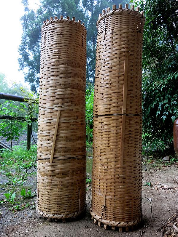 ツガニ(モズクガニ)籠