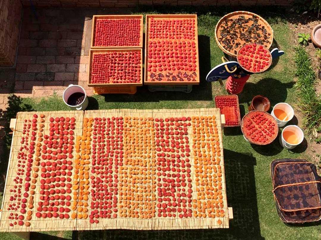 平編竹籠、土用干しg