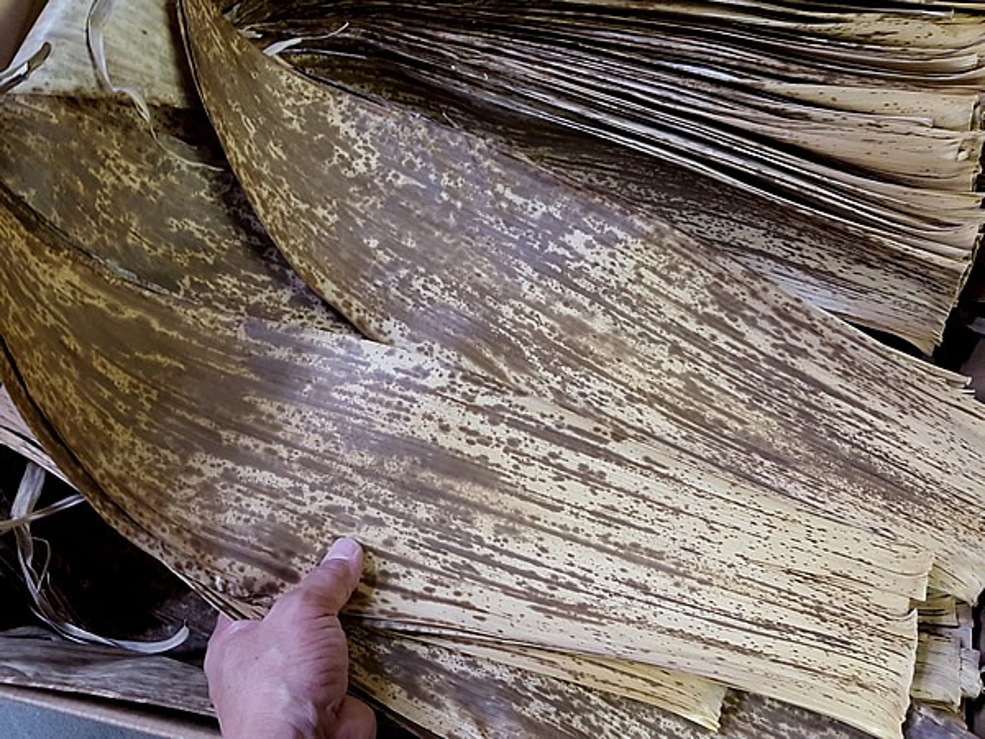 国産竹皮(日本製)