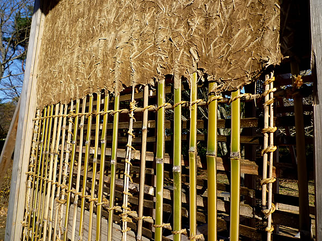 エツリ竹、壁竹、小舞竹