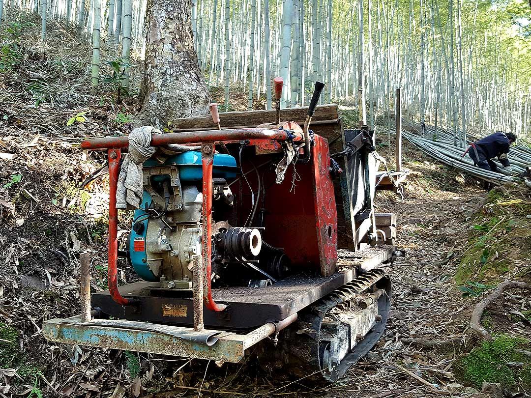 日本唯一虎竹の里の伐採