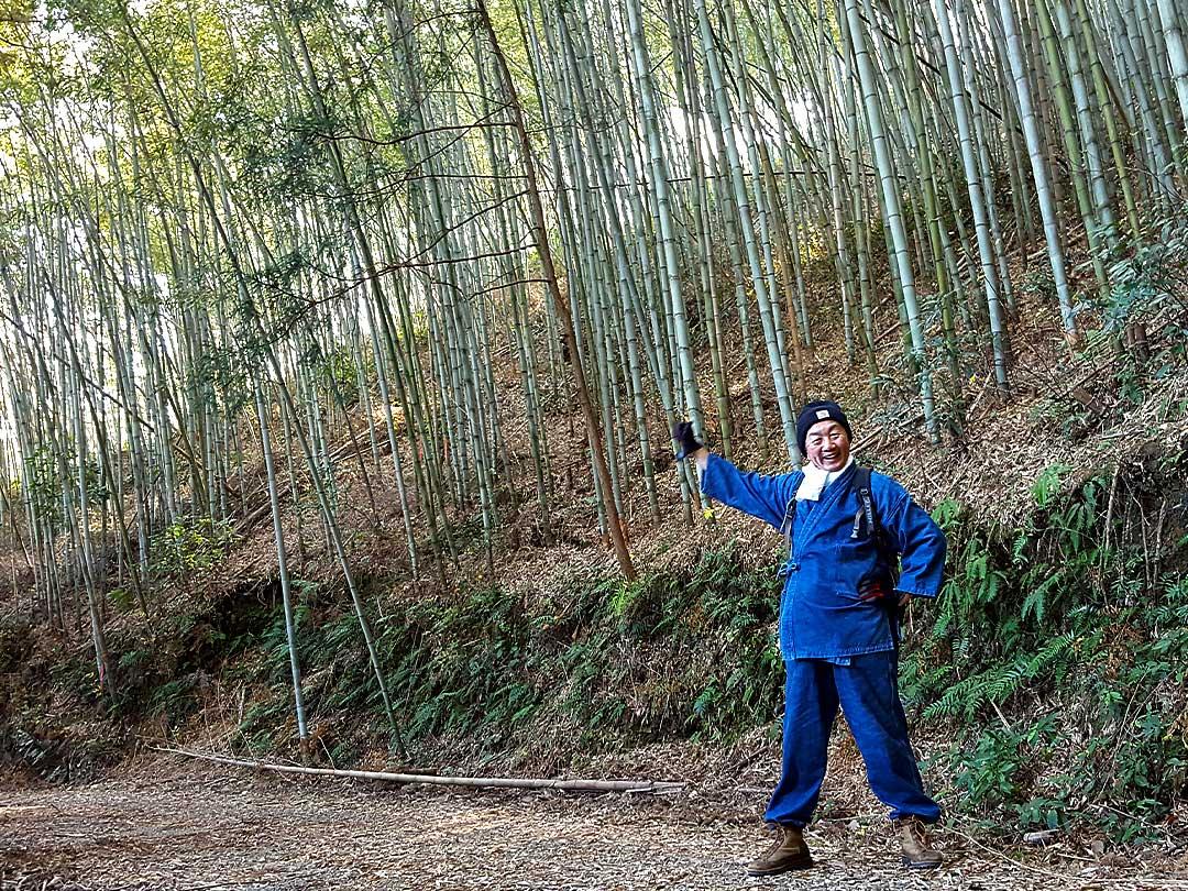 虎竹の竹林