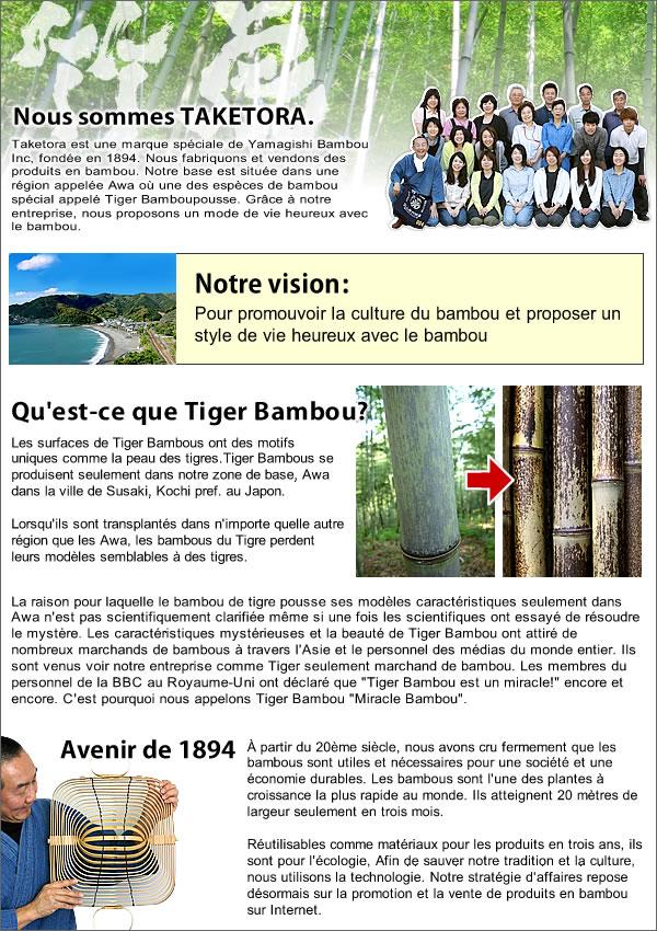 竹虎パリの展示会用フランス語チラシ