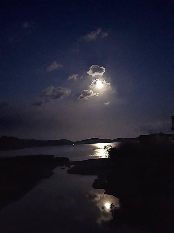 虎竹の里の月