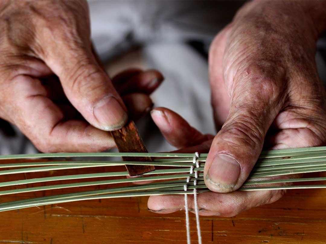 蓬莱竹(ホウライチク)、シンニョウチクの竹編み