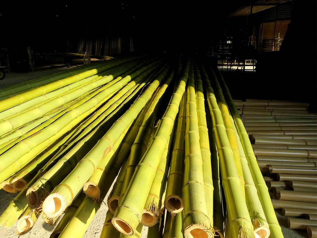 白竹湯抜き