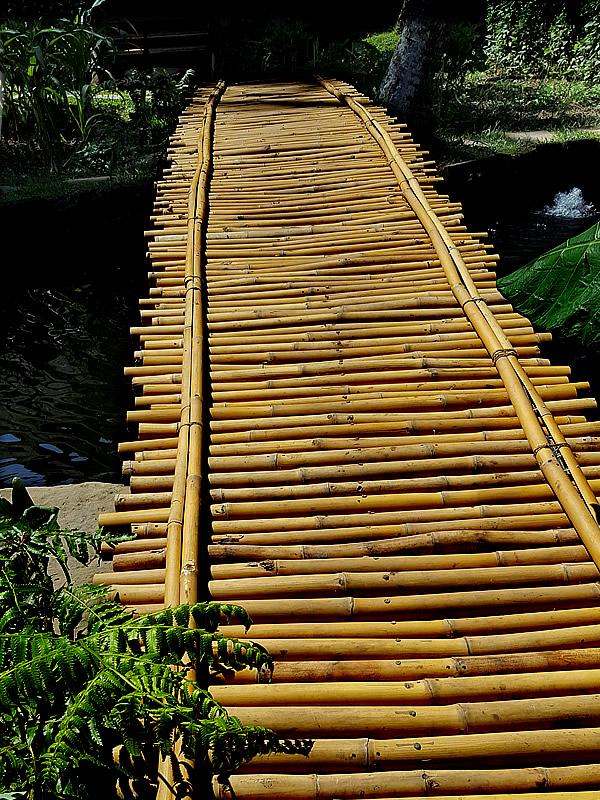 bambu indah、竹橋