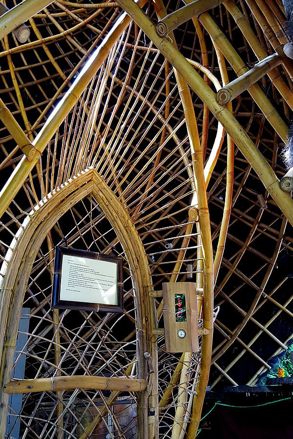 bambu indah、竹エレベーター