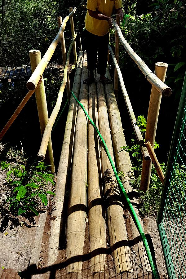 bambu indah、バンブードームへの道