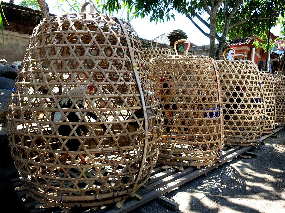 竹製鶏かご