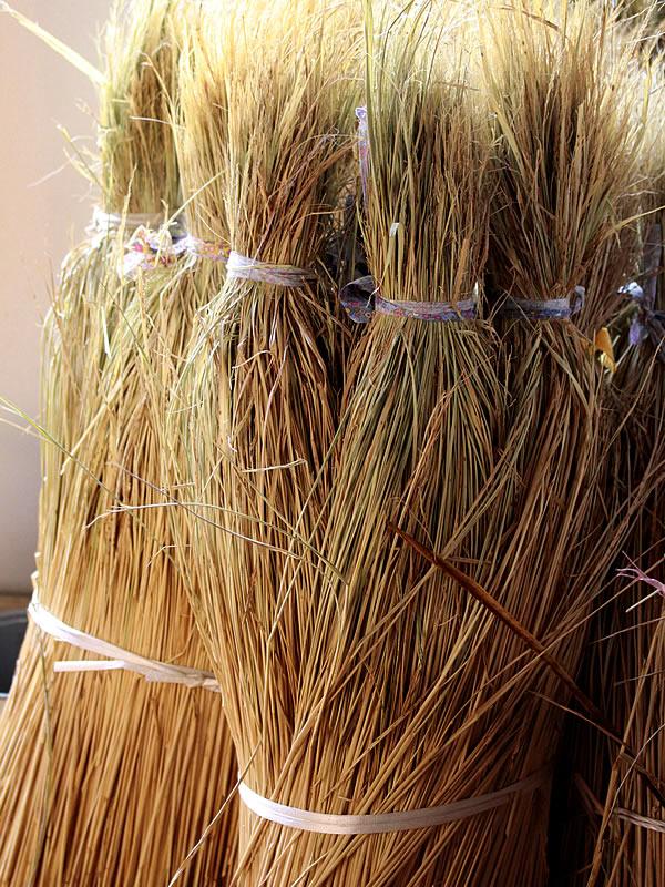竹皮草履製造用の藁