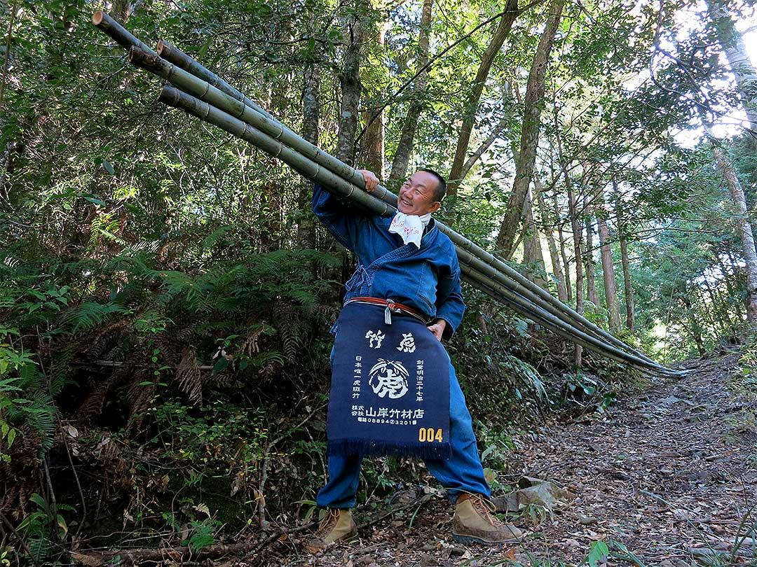 日本唯一の虎竹、竹虎四代目(YOSHIHIRO YAMAGISHI)