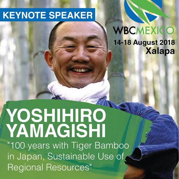 11th World Bamboo Congress Mexico、世界竹会議講演