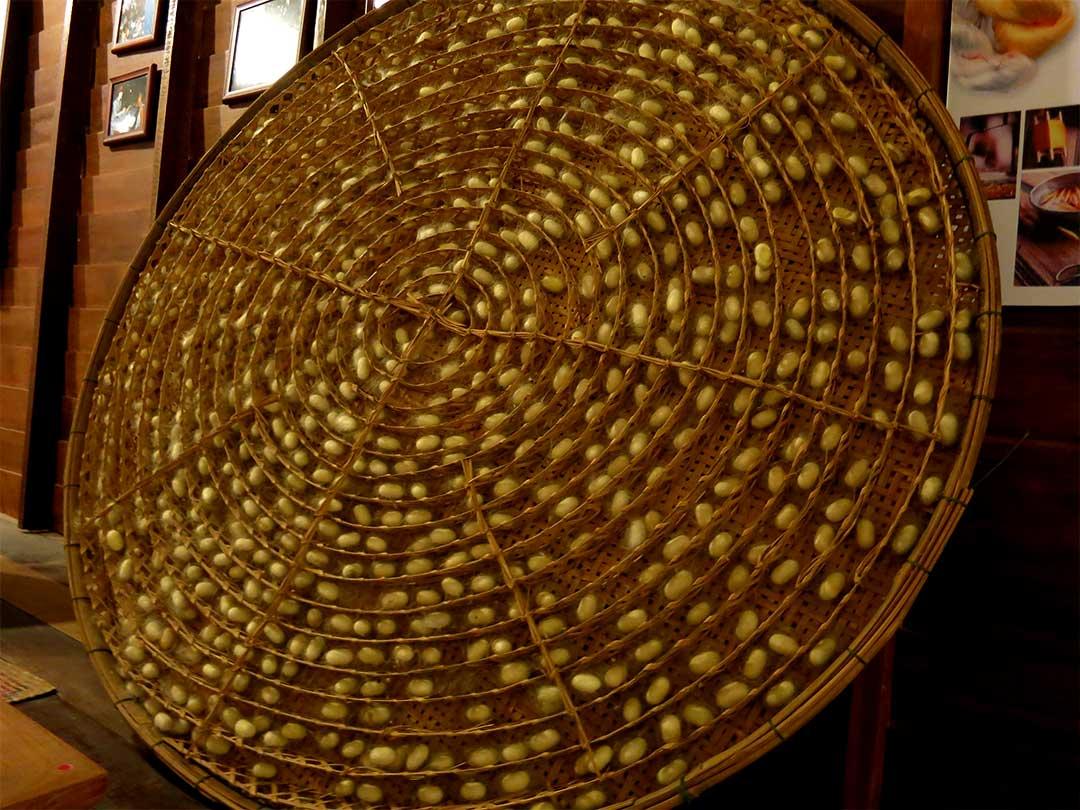 竹ざる、タイの繭づくり