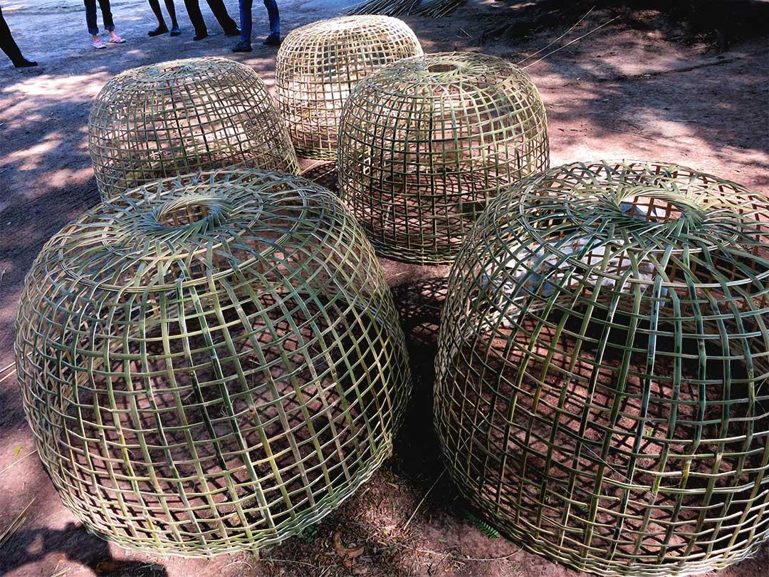 タイの鶏籠