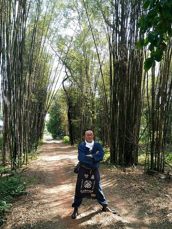 竹虎四代目、タイの竹