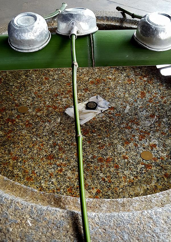 大徳寺、つくばいの青竹