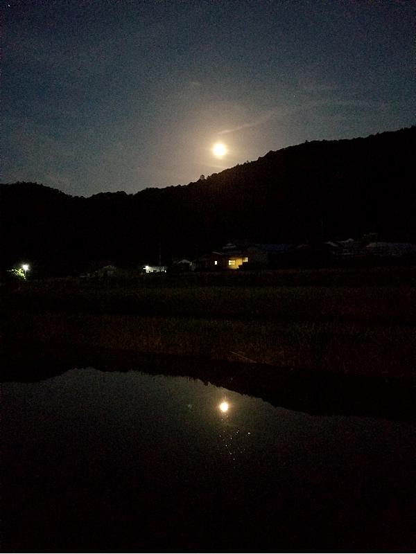 美良布の月