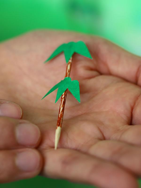 楊枝の虎竹
