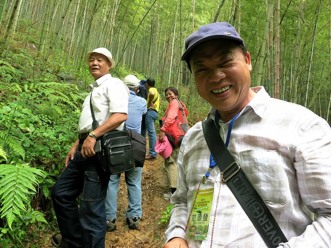 虎竹の里竹林