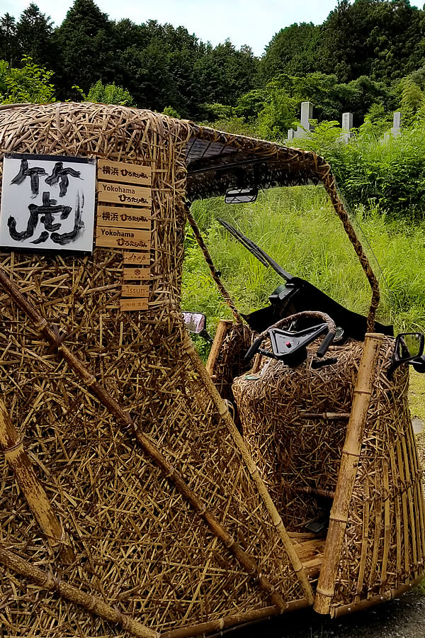 Tiger Bamboo car