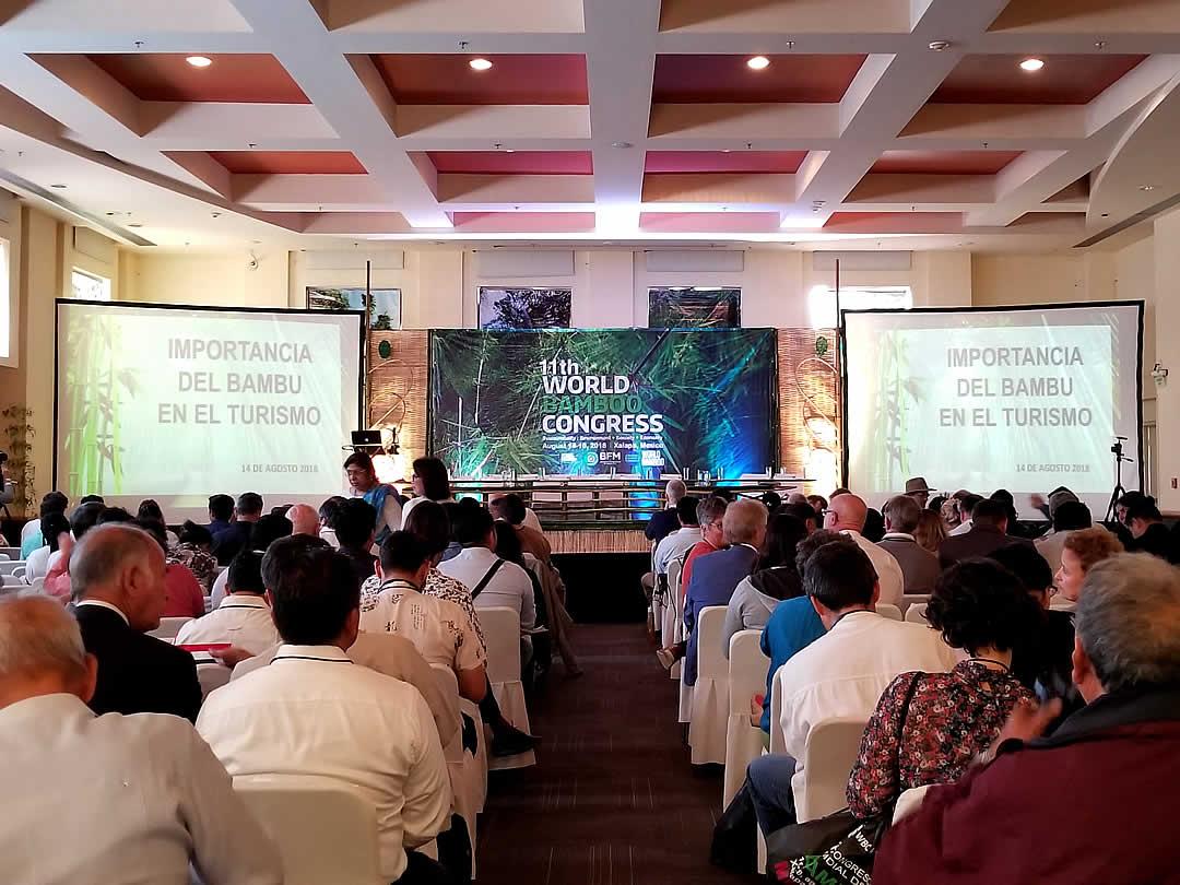 第11回世界竹会議メキシコ