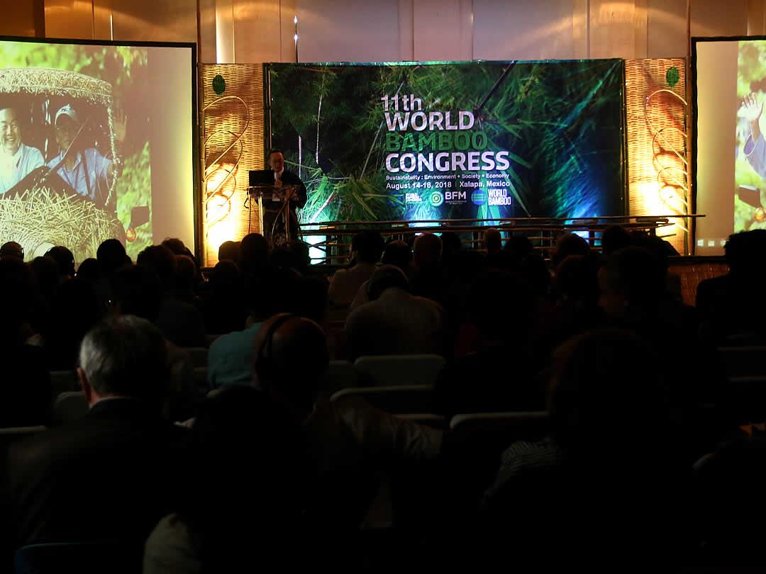 第11回世界竹会議メキシコ(11th World Bamboo Congress Mexico)