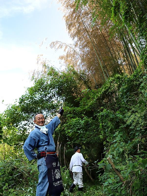 竹の花、竹虎四代目