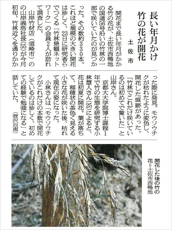 朝日新聞、竹の花