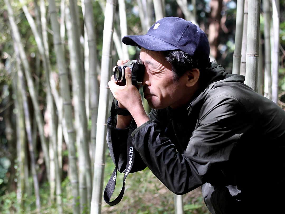 竹林の撮影
