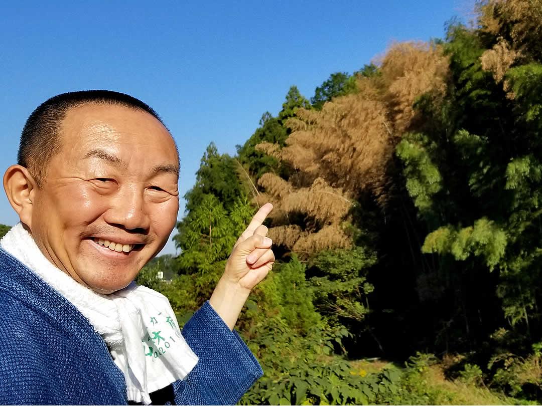 日本最大級、孟宗竹の花