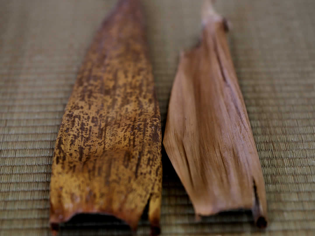 淡竹、真竹の竹皮