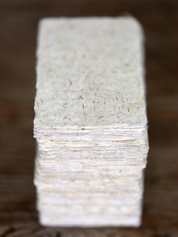 虎竹和紙名刺