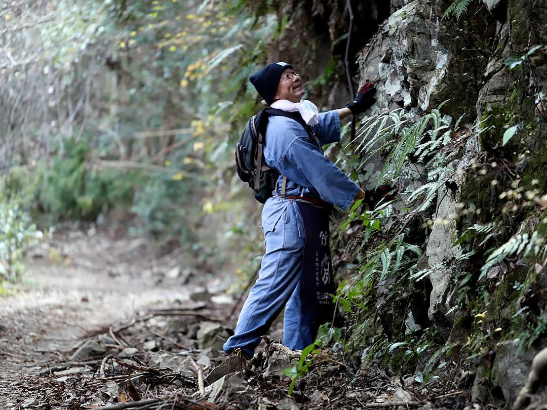 虎竹の里の山道、岩肌