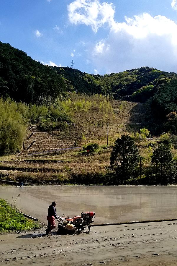 竹職人のアラレ